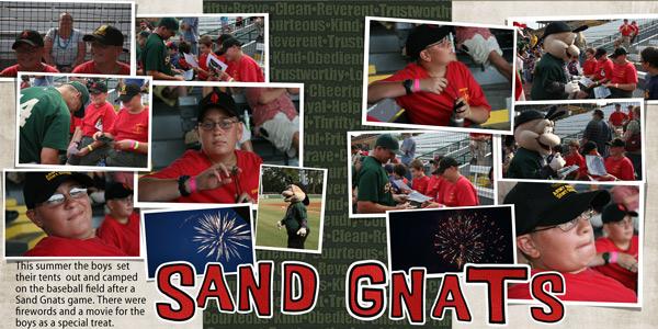 Sand-Gnats-2010