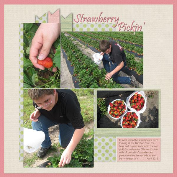Strawberry-Pickin