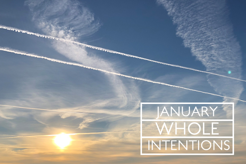 JANUARY WHOLE INTENTIONS copy