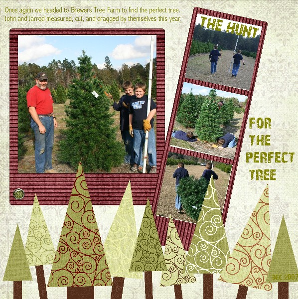 The_hunt_for_the_perfect_tree